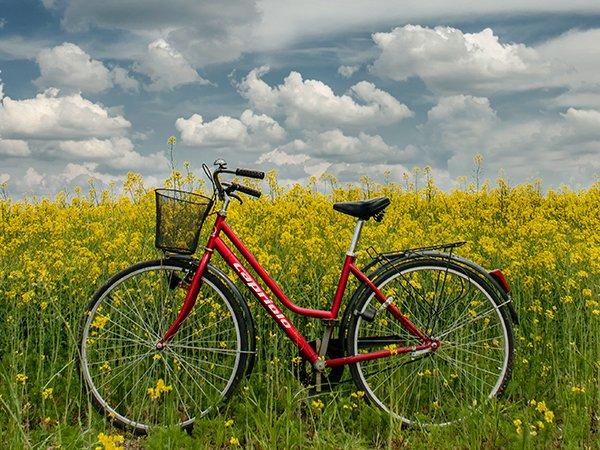 bike_priprema_bicikla_za_prolece